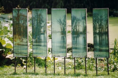 Metamorfose, glas, fotografie, metaal, 5 keer 100 x 30 x 6 cm
